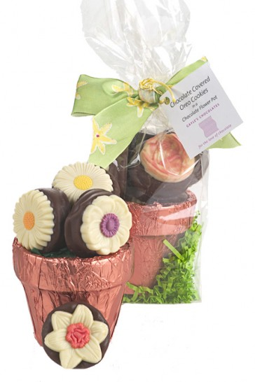 Chocolate Flower Pot with Oreos