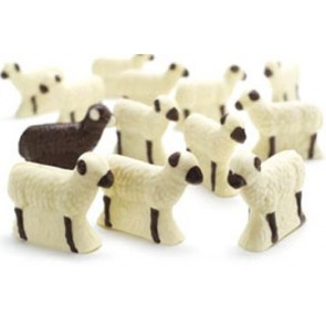 Flock of Chocolate Sheep