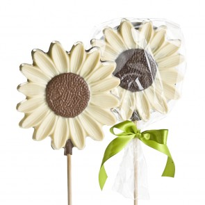 Chocolate Daisy Sucker - White